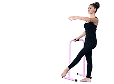 Picture for category Barre