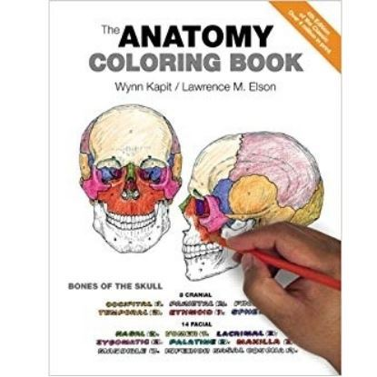 Picture of The Anatomy Coloring Book