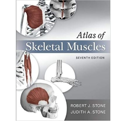 Picture of Atlas of Skeletal Muscles