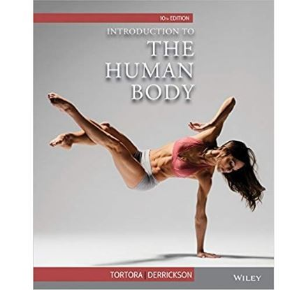 Picture of Introduction to the Human Body